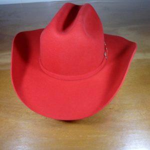 Chapéu de Feltro Pralana Arizona VI